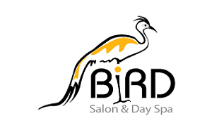 Bird Arty Logo Design