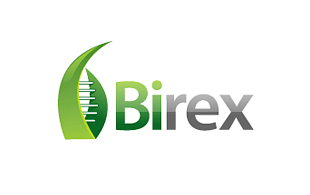 Birex Biotechnology & Bioengineering Logo Design