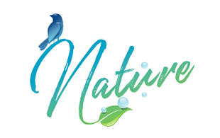Nature Cleaning & Maintenance Service Logo Design