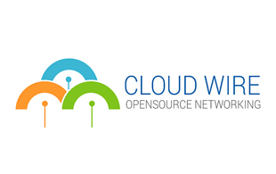 Cloud Wire Corporate Logo Design