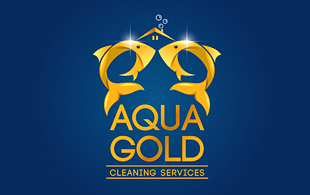 Aqua Gold Hi-Tech Logo Design
