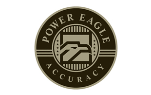 Power Eagle Accuracy Inspection & Detection Logo Design