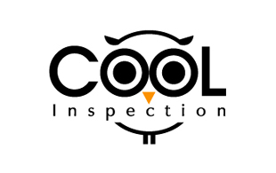 Cool Inspection Inspection & Detection Logo Design