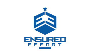 Ensured Effort Insurance & Risk Management Logo Design