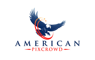 American Pixcrowd Investment & Crowdfunding Logo Design