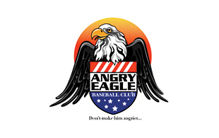 Angry Eagle Masculine Logo Design