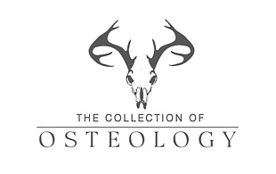The Collection of Osteology Museums & Institution Logo Design