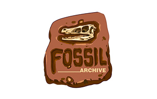 Fossil Archive Museums & Institution Logo Design