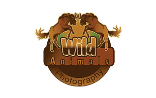Wild Animals Photography & Videography Logo Design