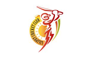 Sports & Athletics Logo Design | Sports Logos Explained ...