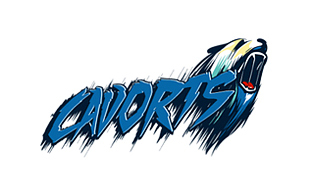 Cavorts Sporty Logo Designs